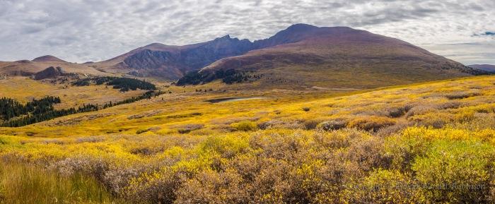 A four frame panorama at the top of Gunanila Pass.